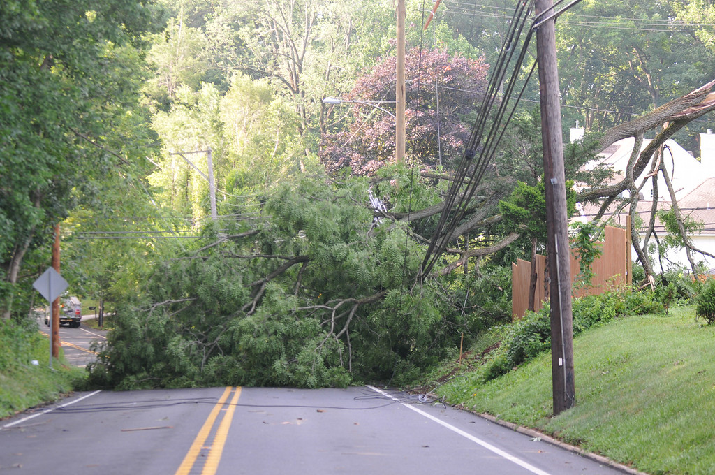 Description of . Sproul Road in Radnor was closed by two downed trees. This one near Ithan Elementary School. Photo Pete Bannan