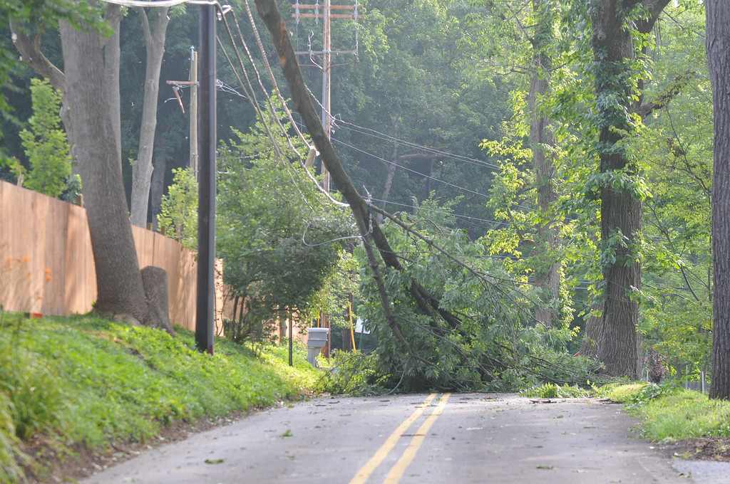 . Roberts Road at Bryn Mawr Avenue was blocked by this tree down on power lines. Over 4000 homes were without power in the Township Wednesday morning. Photo Pete Bannan